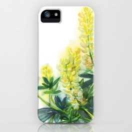 yellow lupines, watercolor sketch from nature iPhone Case