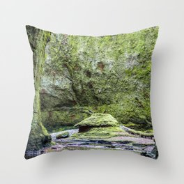 Devils Pulpit, Scotland features green rock and a red river - Tolkien - Fantasy Landscape Throw Pillow