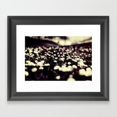 flowers field III Framed Art Print