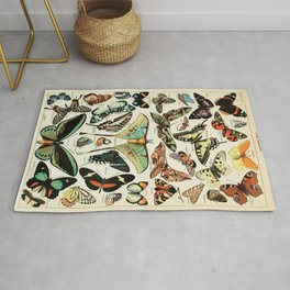 Papillon I Vintage French Butterfly Charts by Adolphe Millot Rug