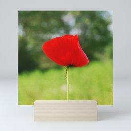 Poppy Mini Art Print