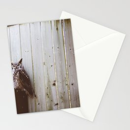 Owl (Montreal, Canada) Stationery Cards
