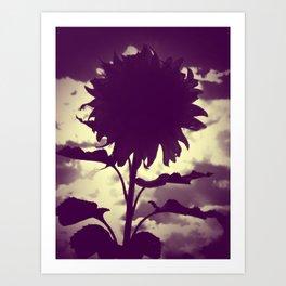 Purple Sunflower Art Print