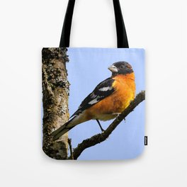 Profile of a Male Black-Headed Grosbeak Tote Bag