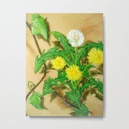 Dandelion and Ivy Metal Print