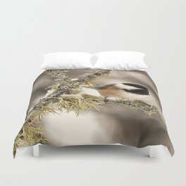 Chickadee and Old Man's Beard - Algonquin Park Duvet Cover