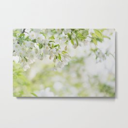 At the End of the Day - Blossom Photo Metal Print