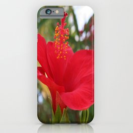 Soft Red Hibiscus With Natural Garden Background iPhone Case