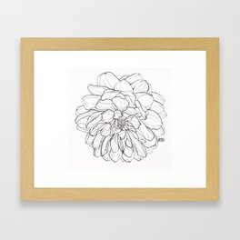 Ink Illustration of a Dahlia Framed Art Print