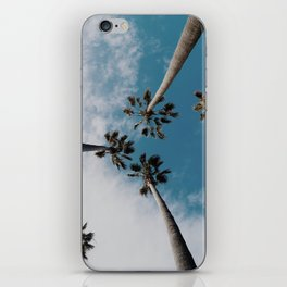 Palm Tree Summer Fun iPhone Skin