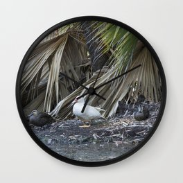 Water Birds Wall Clock