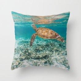 Turtle ii Throw Pillow