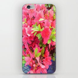 Sweet Fuchsia   iPhone Skin