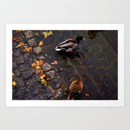 Those Zurich Birds Art Print