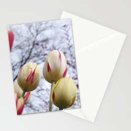 Tulips Ready For Lift Off Stationery Cards