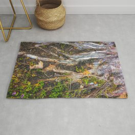 tree roots with green leaves plant on the ground Rug