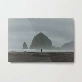 Through Oregon. Metal Print