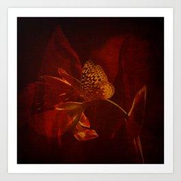 Canna Reds Art Print