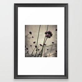 Wild flowers in the city Framed Art Print