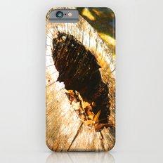Fall Graveyard iPhone 6s Slim Case