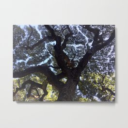 Hawaiian Tree Metal Print