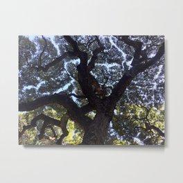 Hawaiian Tree Metal Print