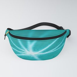abstrct nature Fanny Pack