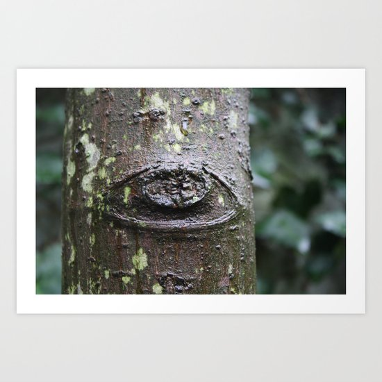Eye of the Tree Art Print