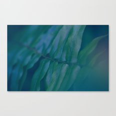 Midnight Green Canvas Print