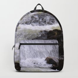 Lowell Tannery Hydro Dam Spring Rush Backpack
