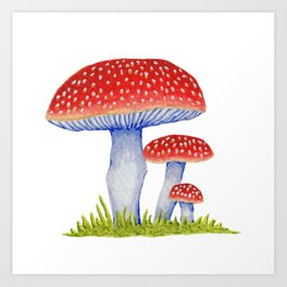 Woodland Toadstools Art Print