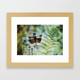 Dragonfly :: Winged Fern Framed Art Print