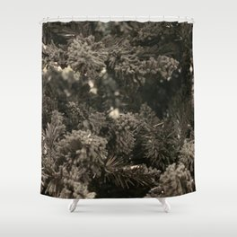 Dusty black pine Shower Curtain