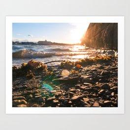 Boston Harbor Beach Sunset Art Print