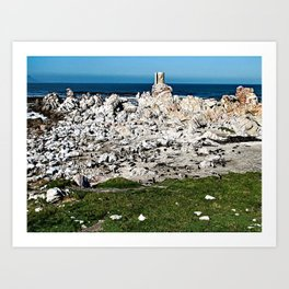 Boulders Beach African Penguin Colony, South Africa Art Print