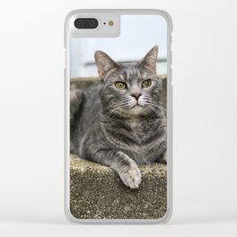 The Grey One Clear iPhone Case