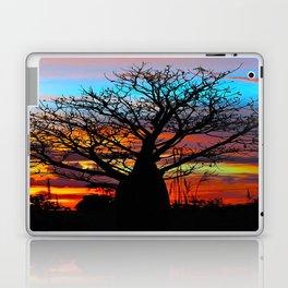 Candy Coloured Boab Laptop & iPad Skin