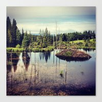 beaver Canvas Prints featuring Beaver Dam by MARLER MADE