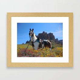 Springtime In The Arizona Desert Framed Art Print
