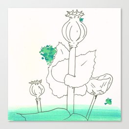 Poppy Seed Wash Canvas Print