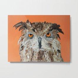 Wise Owl.  Hootie, Who, Who Metal Print