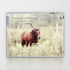 horse in the field Laptop & iPad Skin