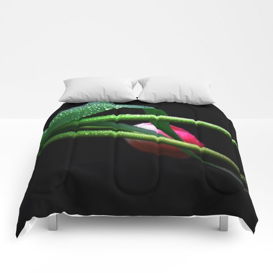 Single Tulip Comforters