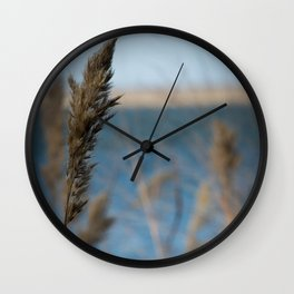 Ode to Pampas Wall Clock