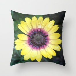 Outer Beauty Throw Pillow