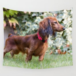 Little Brown Dachshund Playing Garden Wall Tapestry