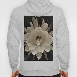 Night Blooming Cereus Hoody