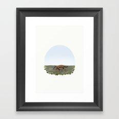 Ornithorhynchus anatinus 'Platypus' Framed Art Print
