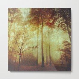 Fall Meditations Metal Print