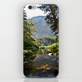 Mountain Stream iPhone Skin